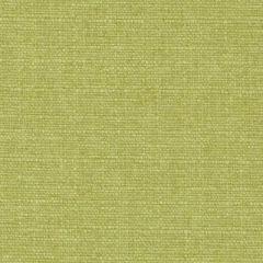 Duralee Wasabi 32823-609 Decor Fabric
