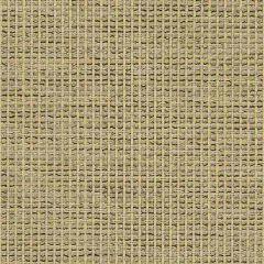 Sunbrella Igneous Cappuccino 5288-0000 Sling Upholstery Fabric