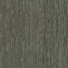 Kravet Basics Shark 33281-821 Multipurpose Fabric