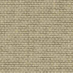 Sunbrella Baron Oak 5300-0000 Sling Upholstery Fabric