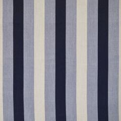Silver State Sunbrella Chamberlain Cobalt Savannah Collection Upholstery Fabric