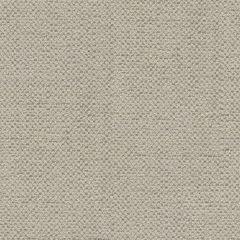 Kravet Couture Buddha Cloth Quartzite 31476-11 by Barbara Barry Multipurpose Fabric