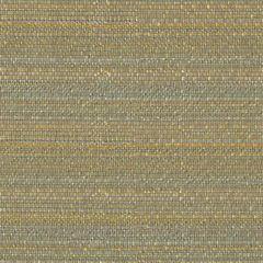 Kravet Sunbrella 31695-1511 Upholstery Fabric
