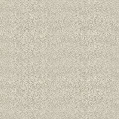 Fabricut Soft Spot Almond 50843-02 Color Studio Vol. VI Collection Indoor Upholstery Fabric