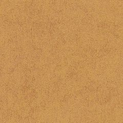 Sunbrella Pumpkin 78008-0000 The Terry Collection Upholstery Fabric
