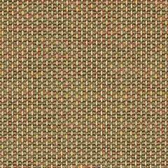Sunbrella Igneous Sesame 5288-0001 Sling Upholstery Fabric