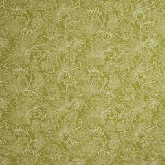 Fabricut Bella Dura Jest-Lime 68304 Upholstery Fabric