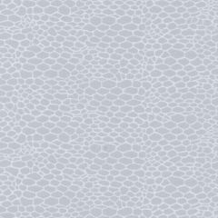 Duralee Tulle Box-Platinum by Eileen K. Boyd 15654-562 Decor Fabric