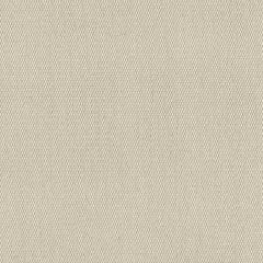 Sunbrella 6042-0000 Oyster 60 in. Awning / Marine Grade Fabric