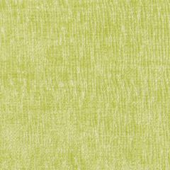 Duralee Barker Weave-Peridot by Eileen K. Boyd 15391-579 Decor Fabric