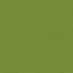 Kravet Sunbrella Function Lime 16235-323 Soleil Collection Upholstery Fabric