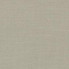 Duralee Latte 32824-587 Decor Fabric