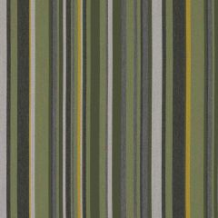 Sunbrella by Mayer Infinity Jade 415-003 Imagine Collection Upholstery Fabric