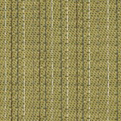 Sunbrella Shangrila-Seagrass 50170-0000 Sling Upholstery Fabric