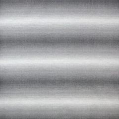 Sunbrella by Alaxi Lost Horizon Flint Newport Collection Upholstery Fabric