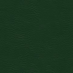 Burkshire 36 Forest Contract Automotive and Healthcare Seating Upholstery Fabric