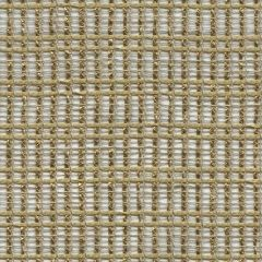 Kravet Pongee Coin 9889-4 by Barbara Barry Drapery Fabric