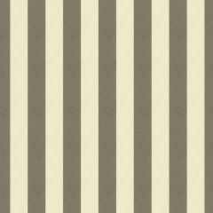 Kravet Smart Grey/Tan 33354-21 Soleil Collection Upholstery Fabric