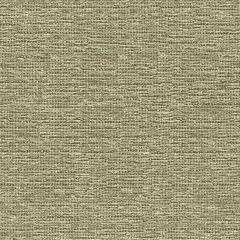Kravet Design Fossil 33186-1611 Indoor Upholstery Fabric