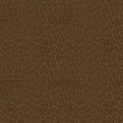 Ultrafabrics Brisa Distressed 3972 Lasso Upholstery Fabric