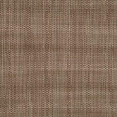 Sunbrella Augustine Sable 5928-0066 Sling Upholstery Fabric