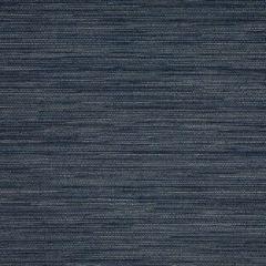 Sunbrella Collect Indigo 50203-0002 Sling Upholstery Fabric