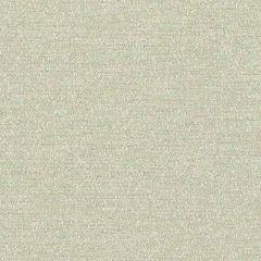 Sunbrella Palazzo Mint PAL J226 140 European Collection Upholstery Fabric