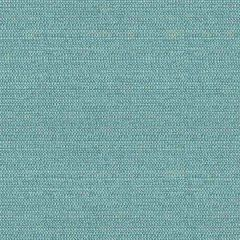 Kravet Design Tully Cornflower 34049-15 Curiosities Collection by Kate Spade Multipurpose Fabric