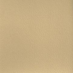Olympus Boltasport Sand OLY180 Multipurpose Upholstery Fabric