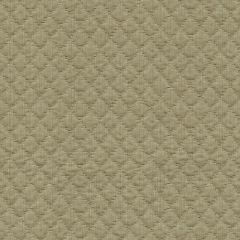 Kravet Couture Display Khaki 30708-106 Indoor Upholstery Fabric