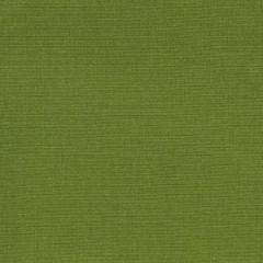 Robert Allen Sunbrella Contract Optima Apple 222225 Upholstery Fabric