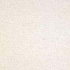 Kravet Sunbrella Loofah Glacier 28051-1 Waterworks Collection Upholstery Fabric