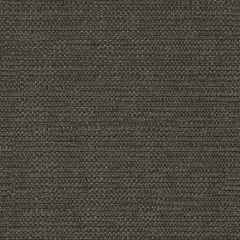 Kravet Contract Beaming Pewter 31546-21 Indoor Upholstery Fabric