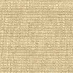 Kravet Contract Beaming Tusk 31546-1 Indoor Upholstery Fabric