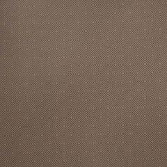 Stroheim Exterior-Fossil 682901 Luxury Upholstery Fabric