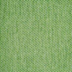 Sunbrella Tailored Cilantro 42082-0024 Fusion Collection Upholstery Fabric