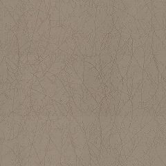 Kravet Vinery Frost Grey 29902-11 Calvin Klein Collection Indoor Upholstery Fabric
