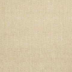 Fabricut Chambak-Papyrus 64101  Decor Fabric
