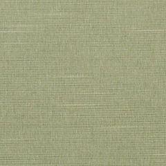 Duralee Honey Dew 32734-243 Decor Fabric