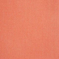 Sunbrella Pique Guava 40421-0005 Fusion Collection Upholstery Fabric