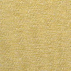 Duralee Lemon 15489-269 Decor Fabric