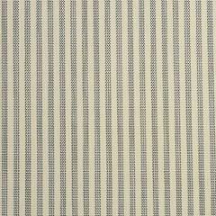 Phifertex Vineyard Stripe Silver YHN 54 inch Sling / Mesh Upholstery Fabric