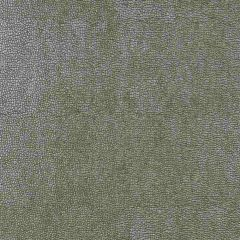 Kravet Design Grey Sparta 11 Indoor Upholstery Fabric