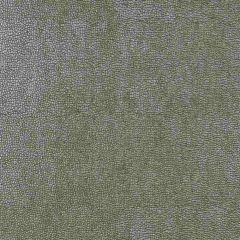 Kravet Design Grey Sparta 11 Indoor Upholstery Fabric