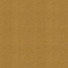 Kravet Contract Izzie Gold Rush 32267-40 Crypton Incase Collection Indoor Upholstery Fabric