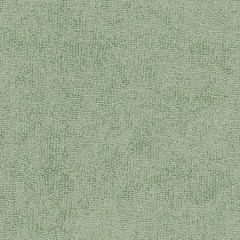 Sunbrella Moss 78007-0000 The Terry Collection Upholstery Fabric