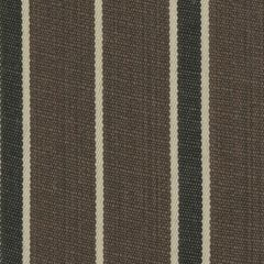 Tempotest Molto Bene 1049/57 Smores Striped Indoor-Outdoor Upholstery Fabric