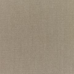 Sunbrella RAIN Canvas Taupe 5461-0000 77 Waterproof Upholstery Fabric