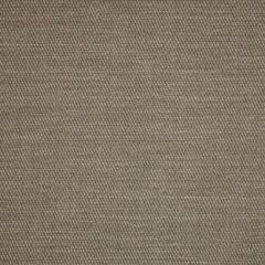 Sunbrella Pueblo Smoke 50202-0003 Sling Upholstery Fabric