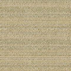 Kravet Sunbrella 31695-116 Upholstery Fabric